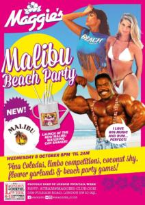 LCW Malibu beach